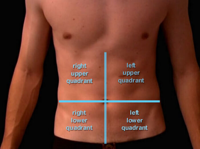 human abdomen quadrants four