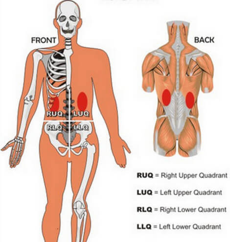 Kidney Pain And Location Stones And Vs Back Pain