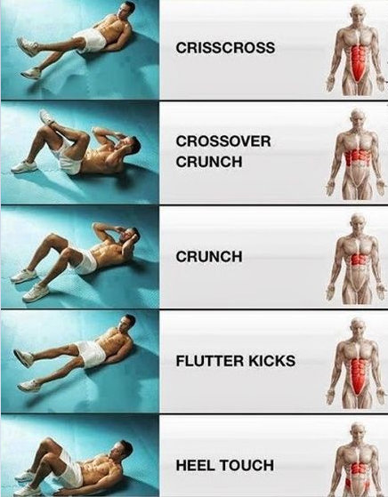 crunching exercises to significantly improve the appearance and strength of the rectus abdominis muscle.image