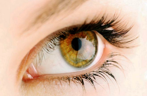 A close up look of a person with hazel eyes.photo